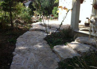 אבן שכבות פראית_result